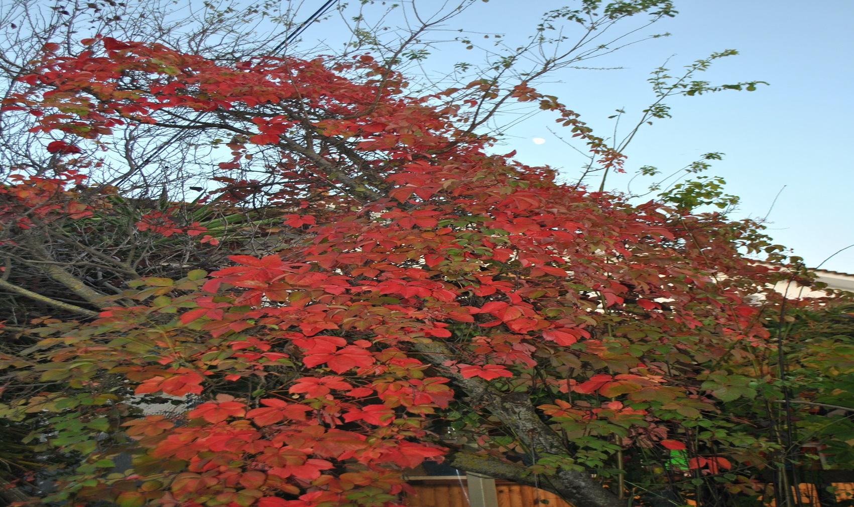 Φθινόπωρο – Οκτώβριος